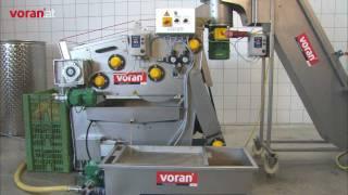 voran prensa de cinturón EBP350 con Equipos de lavado y molienda RM2,2