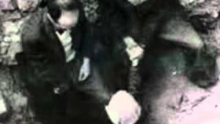 התנגדות בשואה - מרד גטו ורשה