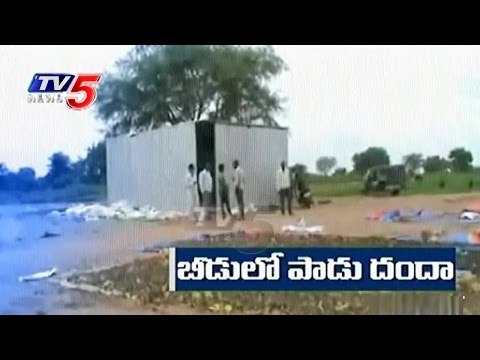 Cattle Feed Mafia | Alcohol Waste Using For Cattle Feed Making | Adilabad | TV5 News