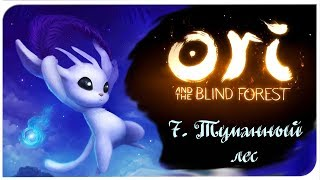 Ori and the blind forest (7) туманный лес