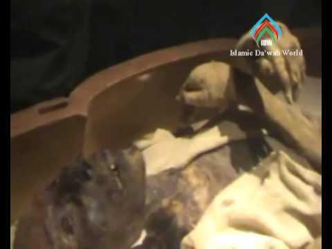 Mumia Firaun ( Ramses II ) Temukan Saintis Perancis Dengan Islam Part 2/2