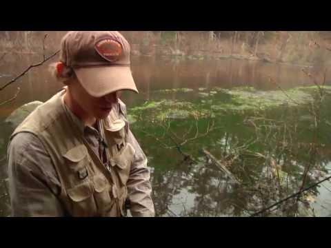 Muntz Angling: Creek Caster Lures & How To Slingshot Cast