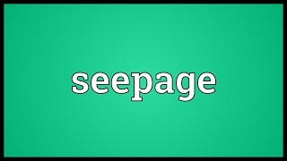 Seepage Meaning