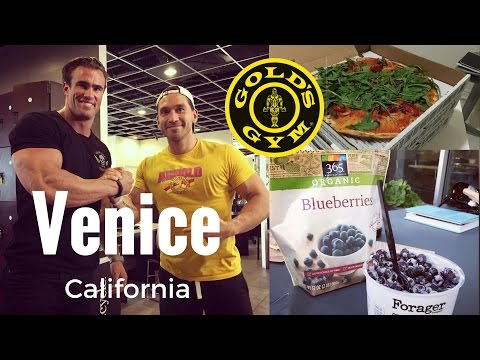 A DAY IN THE LIFE (Venice Beach) Gargoyles e Giornata da WholeFoods | IronManager