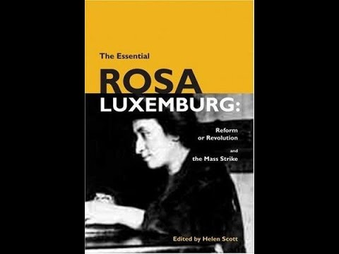 Thoughts on Rosa Luxemburg,Dialectical Materialism: and Moving Beyond Mechanism