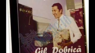 Gil Dobrica - Ordinea de zi
