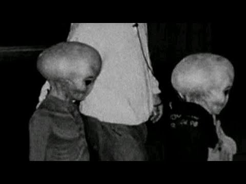 Photos that Show Real extraterrestrials
