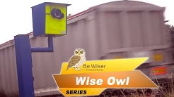 Wise Owl Series (Eps 3) - How do points on my licence affect my insurance policy?