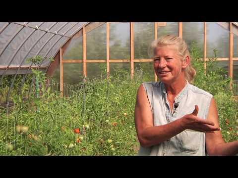 Pat's Patch: Door County's Only Certified Organic Grower