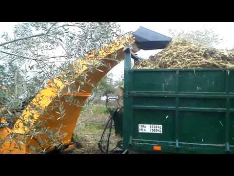 Trituradora Biomasa Descarga A Remolque