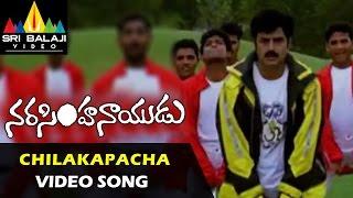 Narasimha Naidu Songs Chilakapacha Koka Video Song Balakrishna Simran Sri Balaji Video