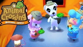 Animal Crossing New Leaf - Welcome amiibo - Desert Island Escape Team KK - 3DS Gameplay Walkthrough