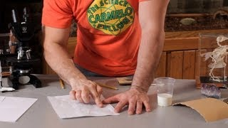 How to Write a Secret Message in Milk | Science Projects