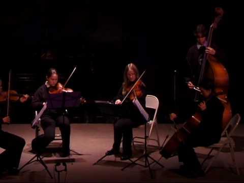 Concerto in D minor by Vivaldi, 11/6/08, The Crowden School