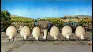 Shaun The Sheep & Flock Dance