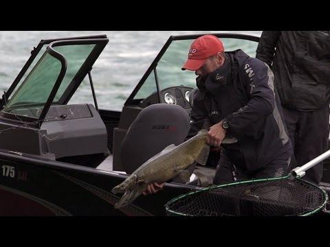 Fall Fishing In Buffalo, NY   Niagara, NY: Re-Discover Your Region #2