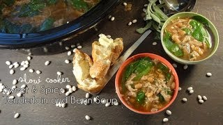 Slow Cooker Sweet And Spicy Tenderloin And Bean Soup