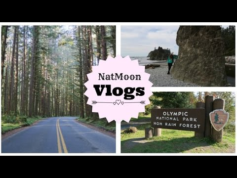 VLOGS DIARIOS USA #18 - Olympic National Park + Bosques Enca