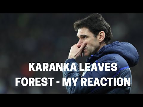 Karanka Leaves Forest - My Reaction
