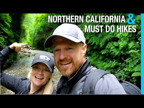 RV NORTHERN CALIFORNIA // REDWOOD TITANS // AIRSTREAM TOUR (TRAVEL VLOG 59³)