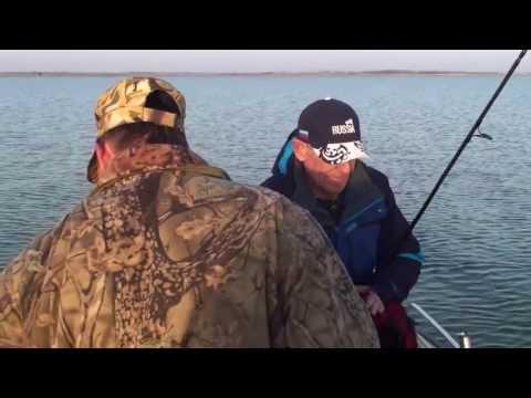 рыбалка на маныче в дивном