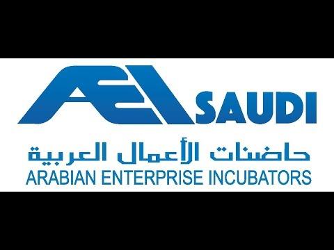 AEI Saudi - Doing Business in Saudi Arabia