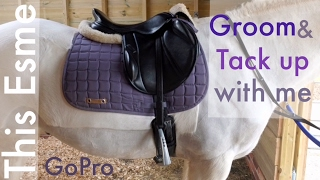 GoPro   Groom and Tack up with me   This Esme