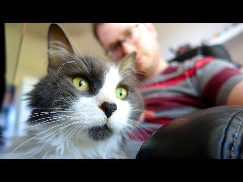Otto has passed away