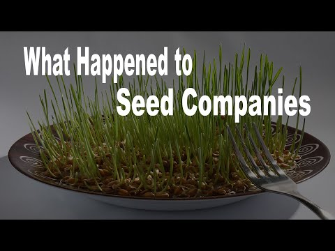 From Hundreds Of Different Seed Companies To Just 6 In The Last 25 Years? Why This Matters