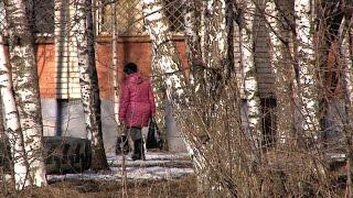 В Рыбинске задержали серийных воров