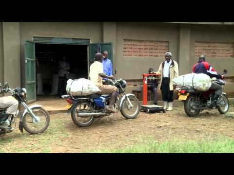 Farming as a Business in Eastern Africa