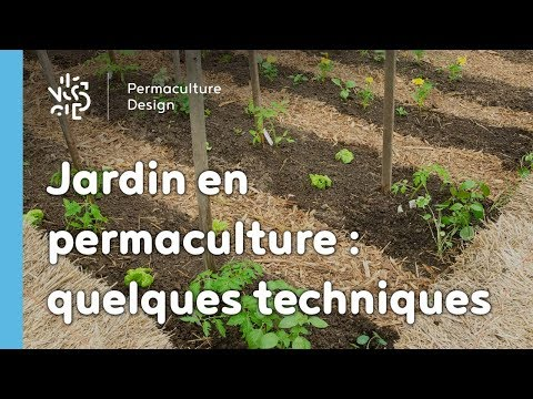 Jardin potager en permaculture for Amenagement jardin 100m2