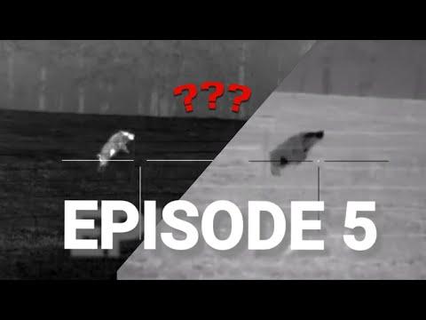Pulsar Trails and Atn Thor 4 hog hunting **Episode 5**