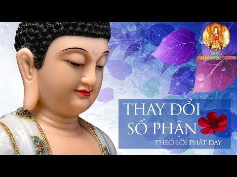 Số Phận Đau Khổ Sẽ Thay Đổi - Nếu Nghe và Làm Theo Lời Phật Dạy - Cuộc Đời Của Bạn Sẽ Thay Đổi #Mới
