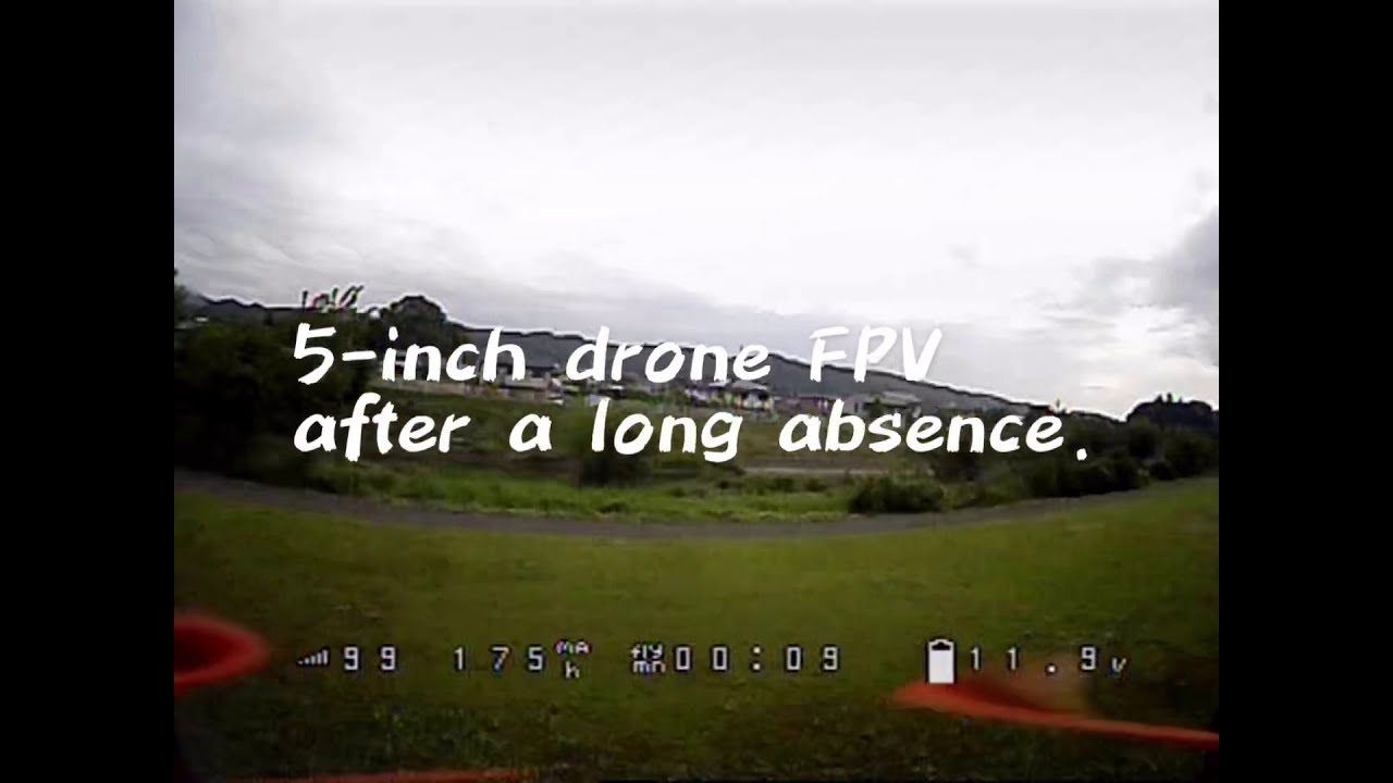 A 5-inch drone FPV after a long absence. картинки