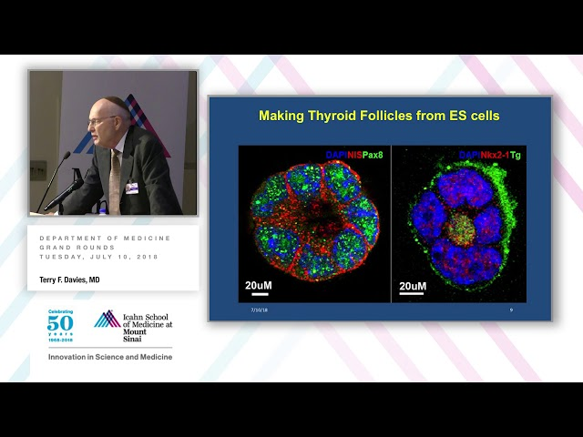 Terry F Davies | Icahn School of Medicine