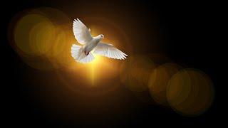 Закон духа жизни во Христе Иисусе