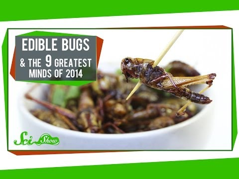 The First Edible Bug Farm & The 9 Greatest Minds of 2014