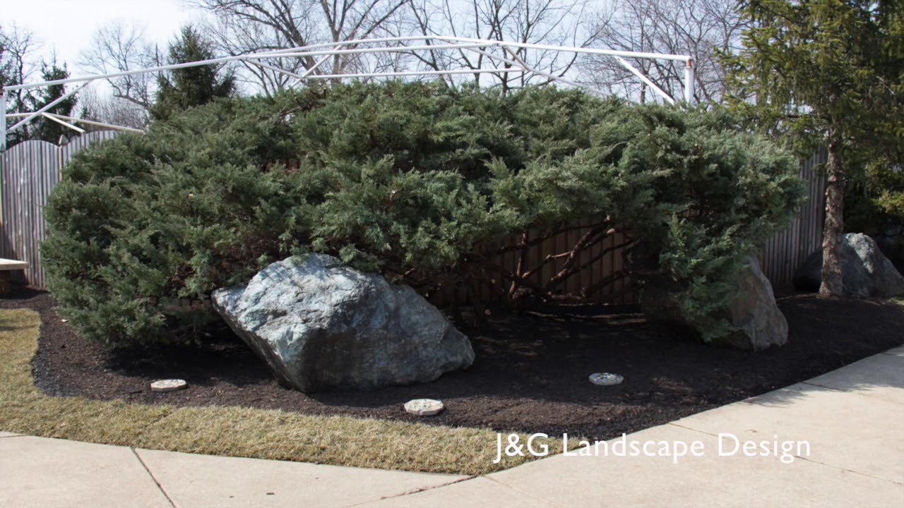Jg Landscape Design Timelapse Afters At Beth Ami Youtube