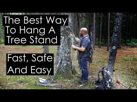 Best Way To Hang A Tree Stand Fast Safe And Easy