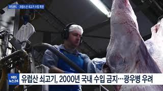 밀려드는 수입 쇠고기·…