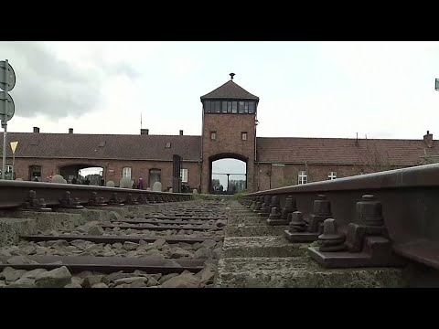 Auschwitz memorial director offers to share Nigerian boy's jail term
