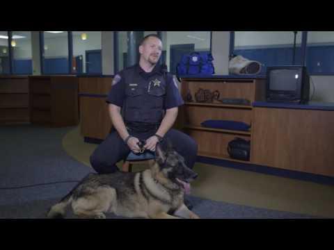 Kane County Sheriff's Dept K9 2014