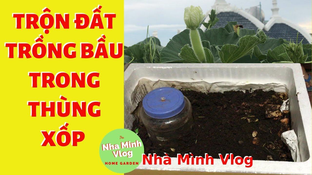 Cách trộn đất trồng bầu trong thùng xốp để cây sinh trưởng tươi tốt @Nha Minh Vlog