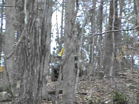 Grizzly Hill- Carolina Adventure World- March 5th, 2011