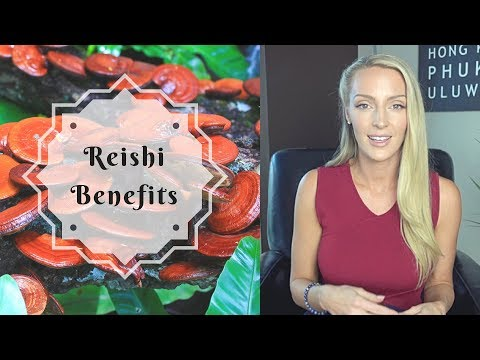 Reishi Benefits | What You Need to Know