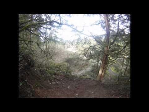 Swan Creek Park, Metro Parks, Tacoma WA