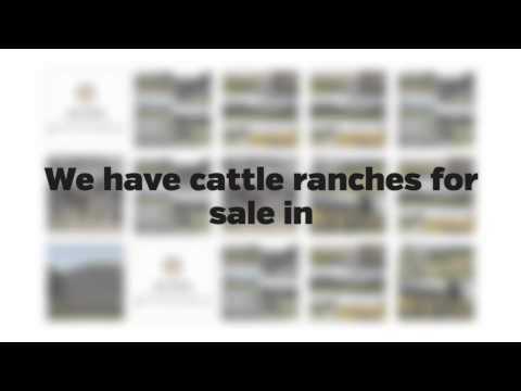 Buying A Beautiful Ranch For Sale in Utah