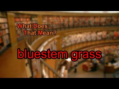 What does bluestem grass mean?
