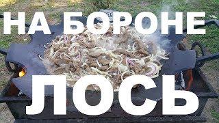 ЛОСЬ В СКОВОРОДЕ БОРОНЕ НА ОГНЕ  БЕФСТРОГАНОВ РЕЦЕПТЫ СЮФ